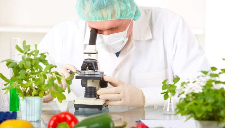 food and pesticide testing in uae